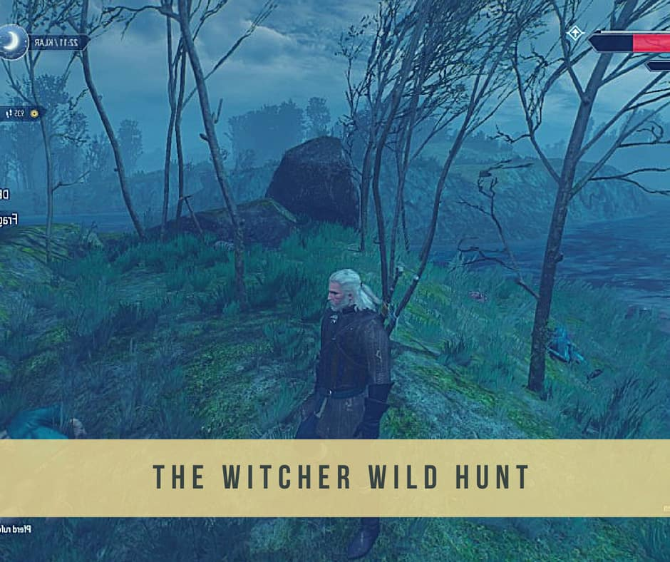 thw witcher wild hunt